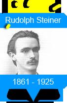 histo_steiner